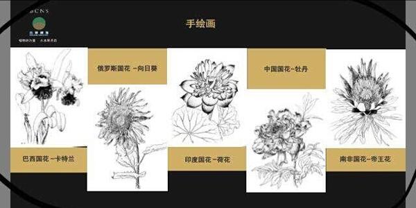 """""""金砖五国花语时光""""本草博物展在北京中医药大学举行"""