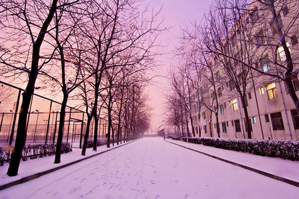 中国民航大学 路上的雪,楼内的光 李纬琪/摄