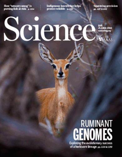 Science!西农姜雨教授团队在国际顶尖期刊发表论文