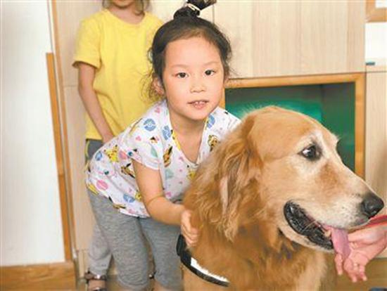 """""""狗狗教授""""幼儿园狂圈粉教孩子学会与动物相处"""