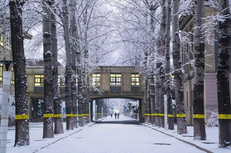 北京航空航天大學  天光漸亮,校園里披上了一層白紗(張展毓/攝)