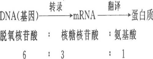 【归纳拓展】分子与细胞